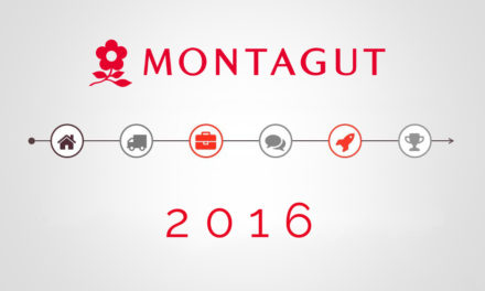 Montagut 2016 review