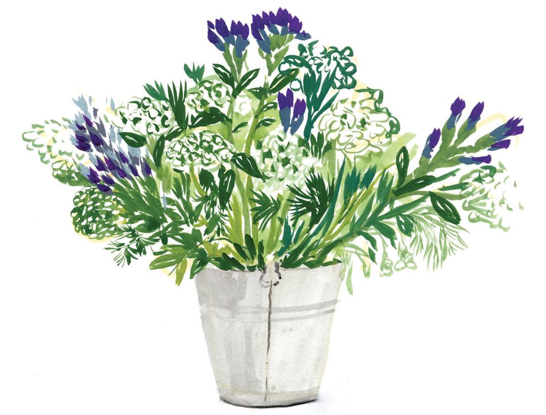 illustration Cassandre Montoriol bouquet
