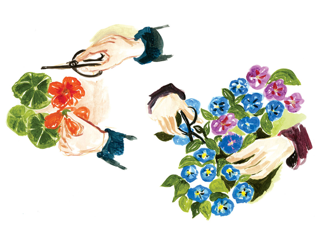 illustration mains fleurs Cassandre Montoriol